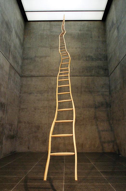 puryear_ladder2.jpg