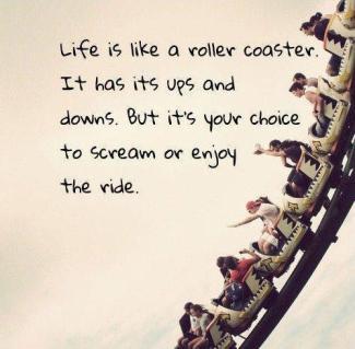 roller-coaster-life